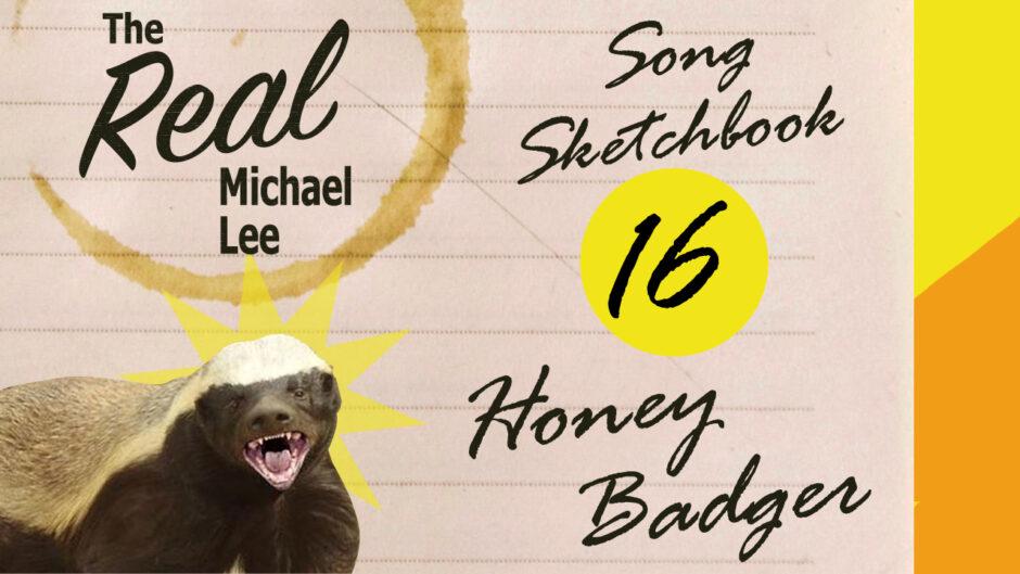 Song sketchbook #16 - Honey Badger